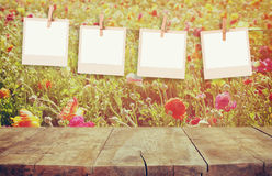 Old polaroid photo frames hanging on a rope with vintage wooden board table in front of summer flowers field bloom landscape Royalty Free Stock Photos