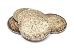 Old polish coins collection  on white background Stock Photo