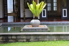 Old Pond. In colonial house in Sri Lanka Stock Image