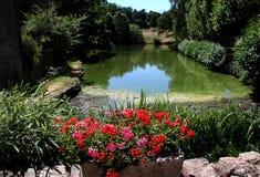 Old Pond, Lake, Mortemart, France Royalty Free Stock Photos