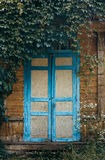 Old porch with double door. Overgrown with creepers Stock Photos