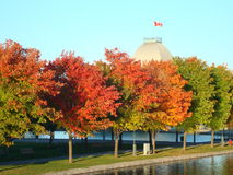 Old Port of Montreal, Canada. Colors of autumn trees, the water mirror and building royalty free stock photography