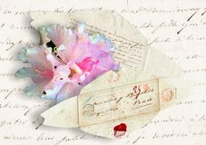 Old letter envelope and flower Royalty Free Stock Image