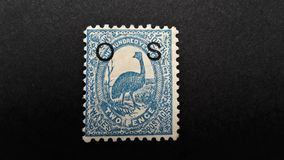 Old postage stamp Australia . Ostrich. royalty free stock photos