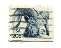 Old postage stamp from USA Goat Royalty Free Stock Image