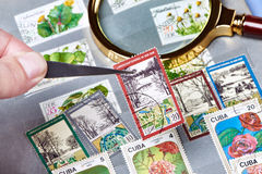 Old postage stamps in album Stock Photography
