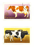 Old postage stamps from Poland Royalty Free Stock Photo