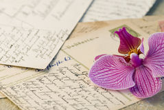 Old postcards and Orchid Royalty Free Stock Image