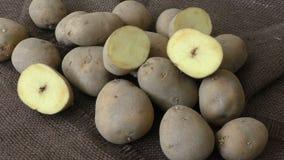 Old potatoes. On jute sack stock video