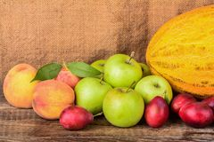Autumn fruits. Autumn harvest of fruits on wood table stock images
