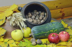 The old pottery and harvest. Stock Image