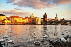Old Prague Royalty Free Stock Image