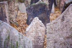 Old Prague Jewish cemetery Royalty Free Stock Photos
