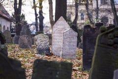 Old Prague Jewish cemetery Royalty Free Stock Photo