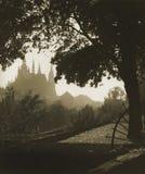 Old prague with prague castle view Stock Photos