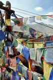 Old prayer flags with Himalaya in the background Royalty Free Stock Photos