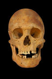 Old prehistoric human skull isolated. Over black Royalty Free Stock Photo