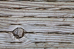 Old Pressure Treated Wood Macro Texture Stock Photos