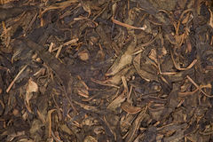 Old Pu Erh Stock Image
