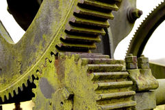 Old pump gear. Close up of two old weathered pump gears covered with green lichen royalty free stock image