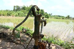 Old pump water rice field nature stock photography
