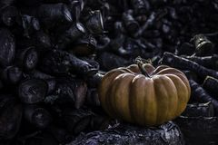 Old pumpking in front of the firewood wall Royalty Free Stock Images
