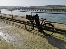 Old Push Bike royalty free stock photo