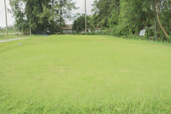 Old putting green Royalty Free Stock Photo