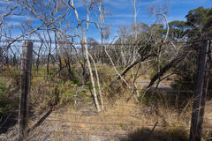 Old quarantine fence in Point Nepean Royalty Free Stock Photography