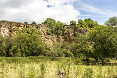 The old Quarry. A old Quarry behind the Trees Stock Image