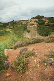Old Quarry. An old quarry near Cliff Ridge Woods, North Yorkshire showing heather growing near by Stock Image