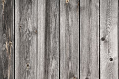 Old ragged fence. Stock Images