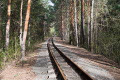 Old rail road in green forest summer Stock Images