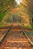 Old rail track. Old disused forest railway track taken in Stock Photos