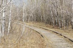 Old Rail Track Stock Photography