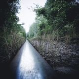 Old railroad. Abandoned railroad in the woods Royalty Free Stock Photo