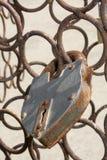 Love locks on bridge stock image