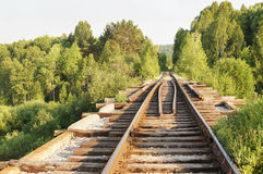 Old railroad in a forest Royalty Free Stock Photography
