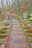 Old Railroad in the Forest Stock Images