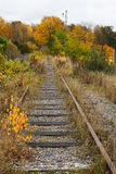 Old railroad tracks. Royalty Free Stock Photo