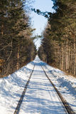Old railroad in winter Royalty Free Stock Images