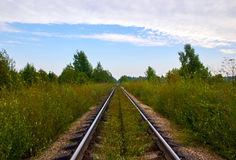 Old rails in landscape. Railway to horizon Royalty Free Stock Image