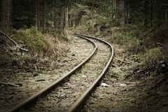 Old rails in the middle of the forest. Narrow track Stock Image