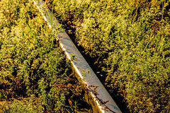Old rails in soft morning sun Royalty Free Stock Images