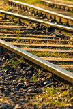 Old rails in soft morning sun Stock Photo