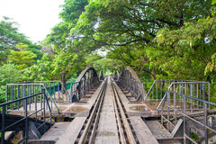 Old railway bridge with green leaf tree Stock Photos