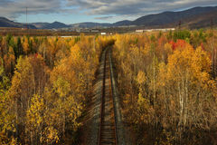 Old railway in the colorful autumn forest, view from above. Stock Photo