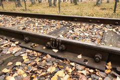 Old railway crevice. Old railway crevice in autumn Royalty Free Stock Photo