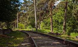 Old railway in forest Royalty Free Stock Photos