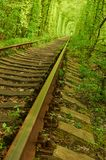 Old railway and green tunnel on background Royalty Free Stock Image